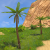 PalmTrees.png